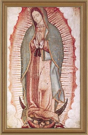 Our Lady Of Guadalupe Framed Picture